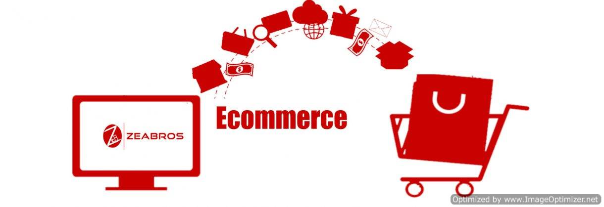 E-commerce Website Development Delhi-NCR