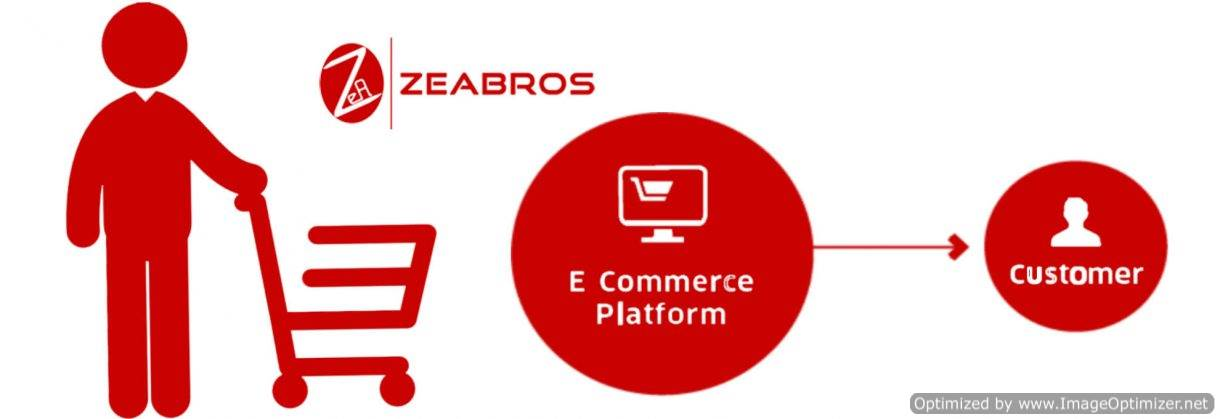 Ecommerce Website in Delhi NCR
