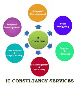 Best IT consultancy company Delhi NCR