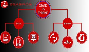 Dynamic and static website in delhi ncr